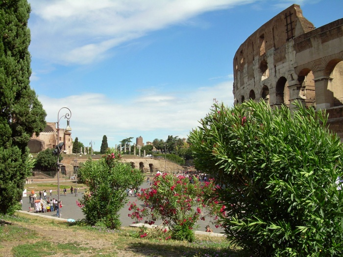 Colosseum puskan takaa