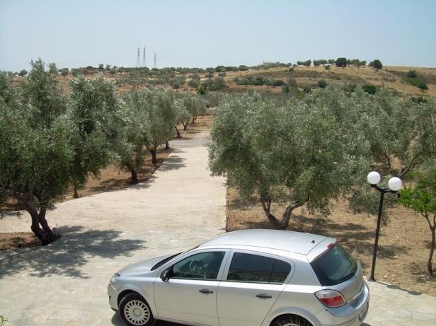 Oliivipuutarha