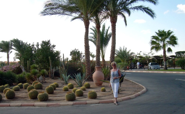 Coraya Bay Egypt Driveway to the hotel