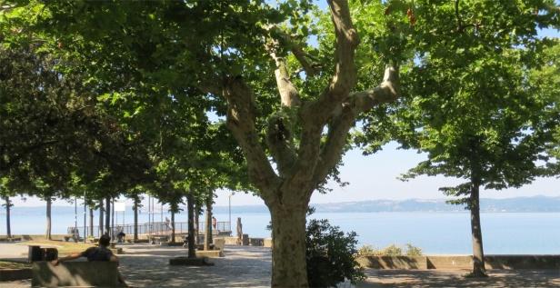 Trevignano city_park by the lake_2