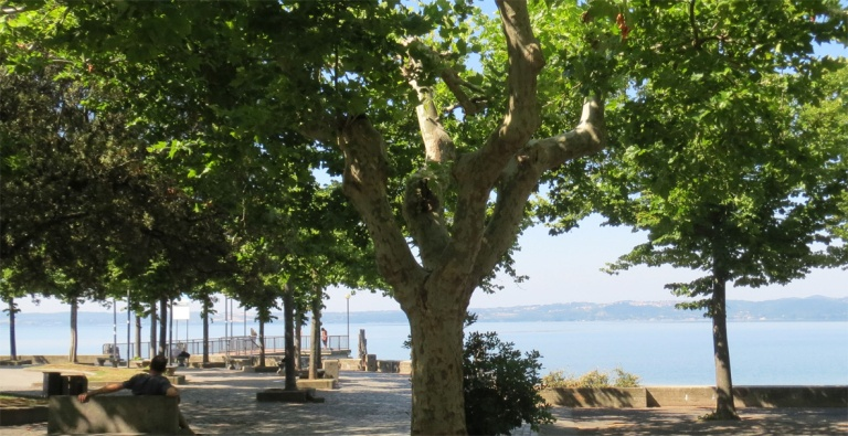 Trevignano city_park by the lake_2