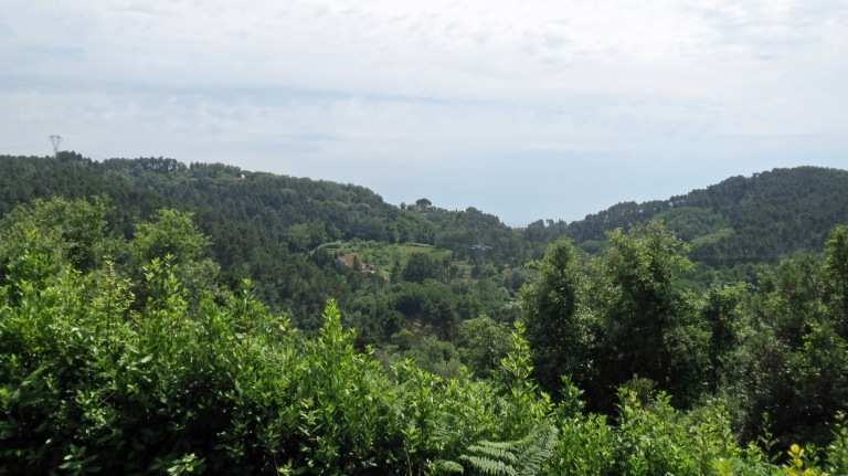 Montemagno view towards the Med