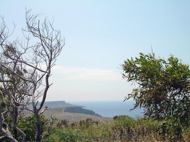 Malta landscape 4