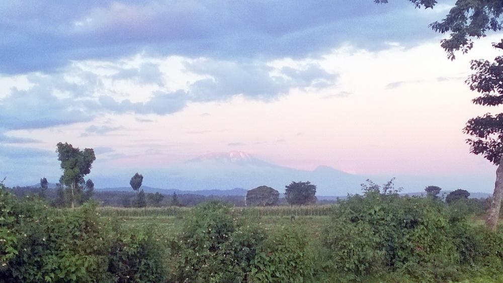 Kilimanjaro. Kuva: Sinikka Antila