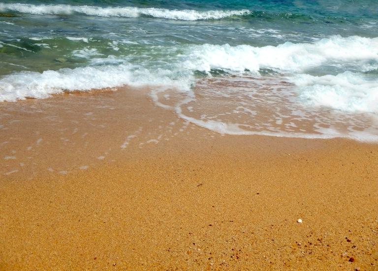 The Seashore.jpg